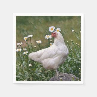 Chicken With Daises Napkin