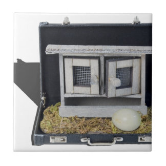 ChickenCoopBriefcase031415.png Ceramic Tile