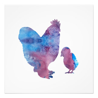 Chickens Photo Print
