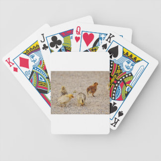 Chicks #2 bicycle playing cards