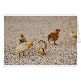 Chicks #2 card
