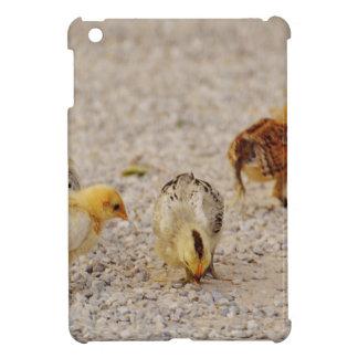 Chicks #2 case for the iPad mini