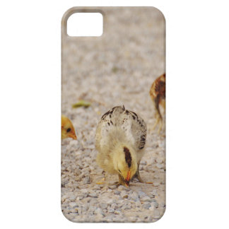 Chicks #2 iPhone 5 case