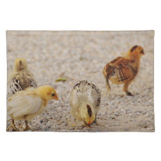 Chicks #2 placemat