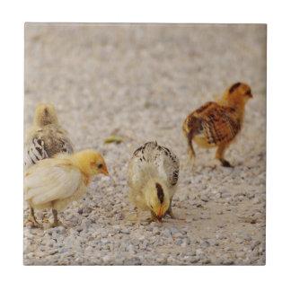 Chicks #2 tile