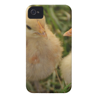 Chicks Case-Mate iPhone 4 Case