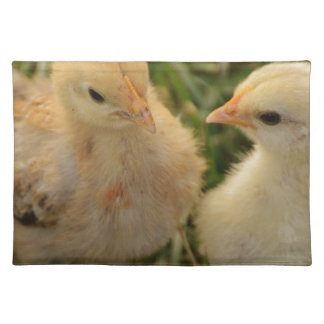 Chicks Placemat