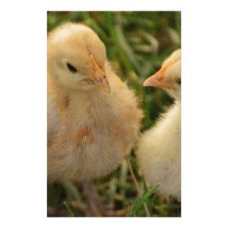 Chicks Stationery