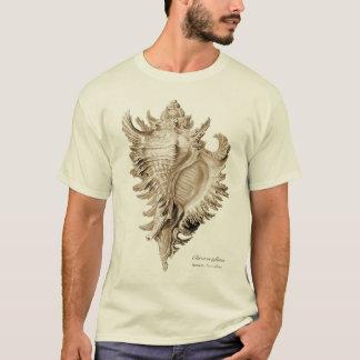 Chicoreus ramosus (Chicoreus inflatus). T-Shirt
