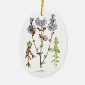 Chicory Botanical Ornament