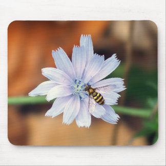 Chicory Wildflower and American Hover Fly Mousepad