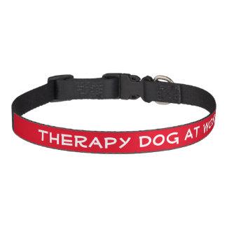 Chien de thérapie au travail (milieu) collier pour chien