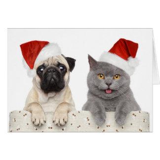Chien et chat dans le chapeau rouge de Noël Carte De Vœux