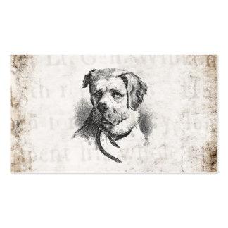 Chien vintage de St Bernard de 1800s - chiens de S Carte De Visite
