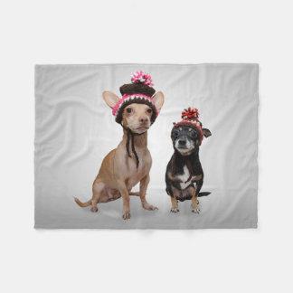 Chiens de chiwawa avec la photo de chapeaux couverture polaire