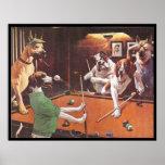 Chiens jouant la piscine - le beagle de éraflure affiche