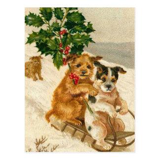 Chiens mignons de Noël Carte Postale