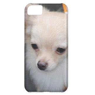 chihuahua-29.jpg iPhone 5C case