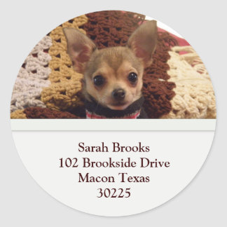 Chihuahua Address Labels Round Sticker