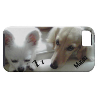 Chihuahua and datsukusu iPhone 5 cases