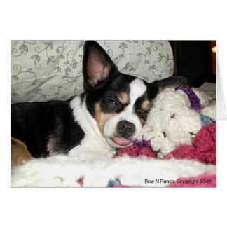 Chihuahua Blah Card