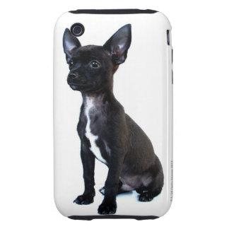 Chihuahua iPhone 3 Tough Covers
