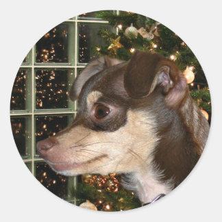 Chihuahua Christmas Round Sticker