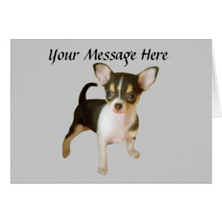Chihuahua Cutie Greeting Card