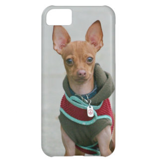 Chihuahua dog cover for iPhone 5C