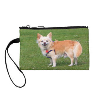 Chihuahua dog long-haired beautiful photo coin wallet