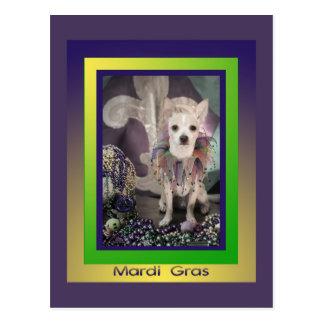 Chihuahua Dog Mardi Gras Postcard