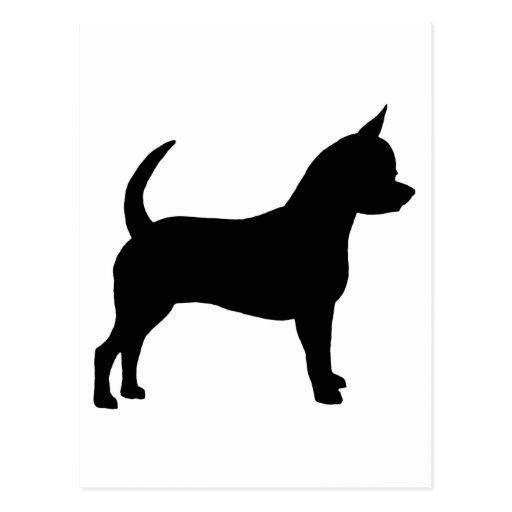 Chihuahua Dog Postcard