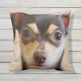CHIHUAHUA FACE FOCUS OUTDOOR PILLOW
