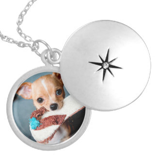 chihuahua flip flops locket necklace