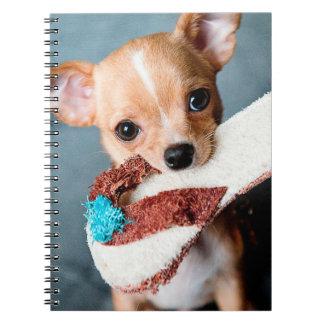 chihuahua flip flops notebook
