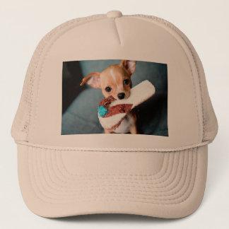 chihuahua flip flops trucker hat