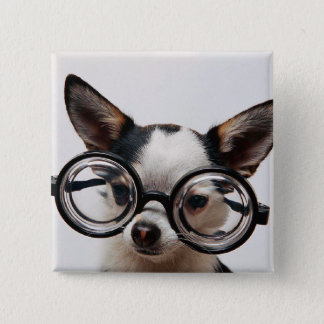 Chihuahua glasses - dog eyeglasses 2 inch square button