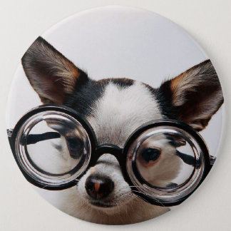 Chihuahua glasses - dog eyeglasses 6 inch round button