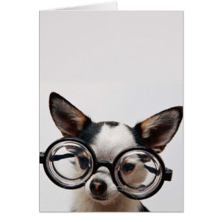 Chihuahua glasses - dog eyeglasses card