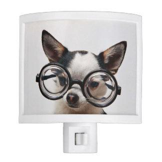 Chihuahua glasses - dog eyeglasses night light