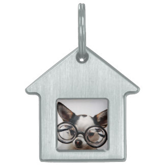 Chihuahua glasses - dog eyeglasses pet name tag