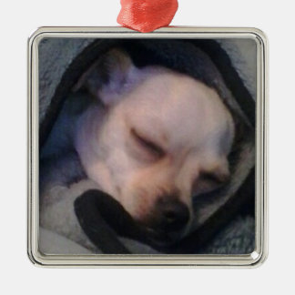 Chihuahua in a blanket metal ornament