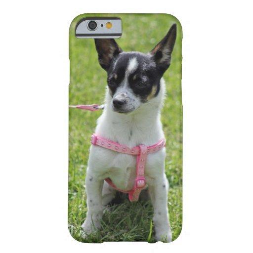 chihuahua iPhone 6 case