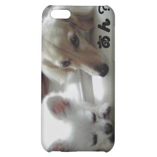 Chihuahua is the cutest dog. iPhone 5C case