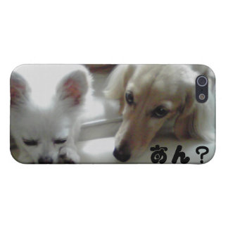 Chihuahua is the cutest dog. iPhone 5 cover