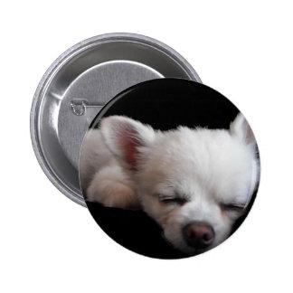 Chihuahua Minnie ピン