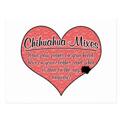 Chihuahua Mixes Paw Prints Dog Humor Post Cards