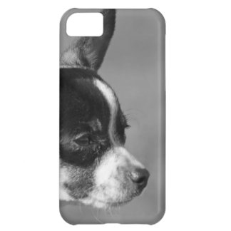 chihuahua phone case iPhone 5C cases