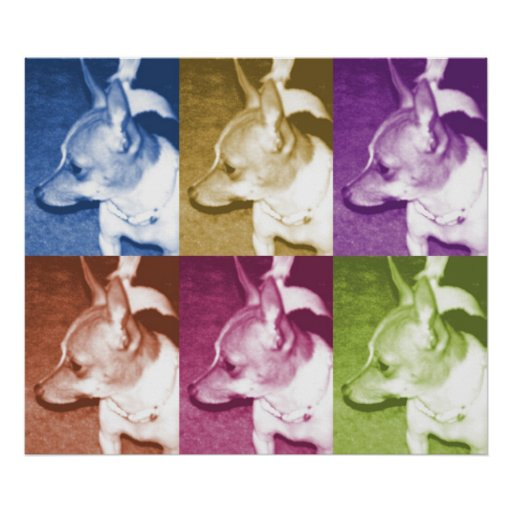 Chihuahua PopArt Poster