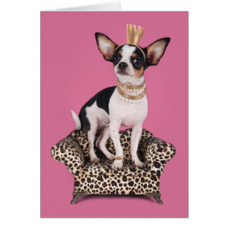 Chihuahua Princess Card